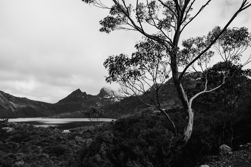 Cradle-Mountain-12